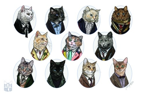 thedailydingo411:  Doctor Who Cats