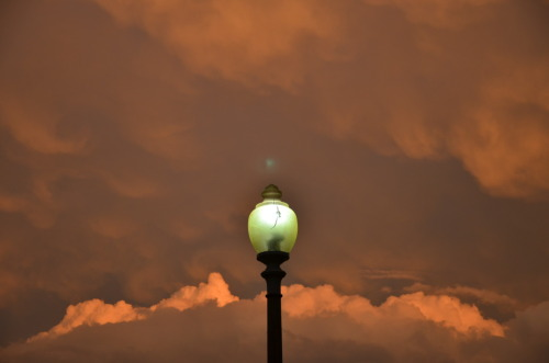 "washingtonpoststyle:  The light in D.C. right now is majestic. Shot from inside Logan Circle. Photo by Dan Zak  Yeah, co-sign. In a ""We're about to get hit by a massive flippin' hurricane"" kind of way. But majestic nonetheless."