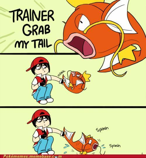 Pokememe - GRAB MY TAIL!