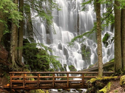 Ramona Falls, Mount Hood Oregon  Don't know why I am on such a nature kick today…