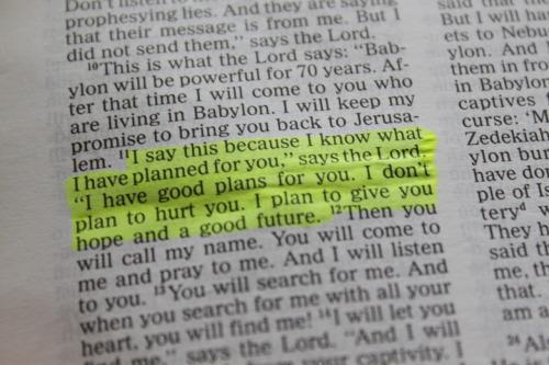 runmylittlevixen:  -inspire:  Jeremiah 29:11  well, this is good news. :)