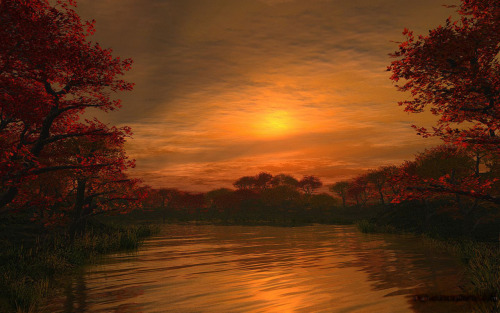 Golden Night by Sweetwitchy