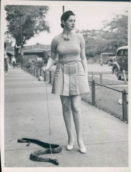 spanghew:  Burlesque dancer Zorita and her pet snake.