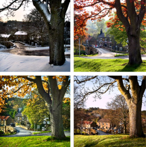 Like a storybook… enchantedengland:     Four Seasons in the magical little village of Lealholm, in Scarborough, North Yorkshire, England.  I love this village!!! I am stalking this village (images of it, anyway). Hopefully Rye will not be jealous. I shall return to you, my love. (photo by samsalt1 on Google Earth.