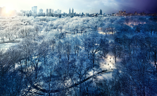 Central Park, NYC, Day to Night™ Photography by Stephen Wilkes