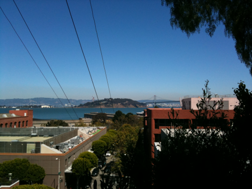 Looking at Treasure Island and the Bay Bridge through a clearing in the trees.   Greenwich St at Montgomery.