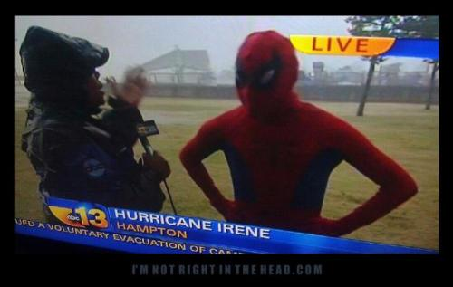 """Well, Denise, my plan is to make a giant web and trap Irene inside of it, thus saving the East Coast from catastrophe."""