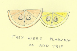 They were planning an acid trip
