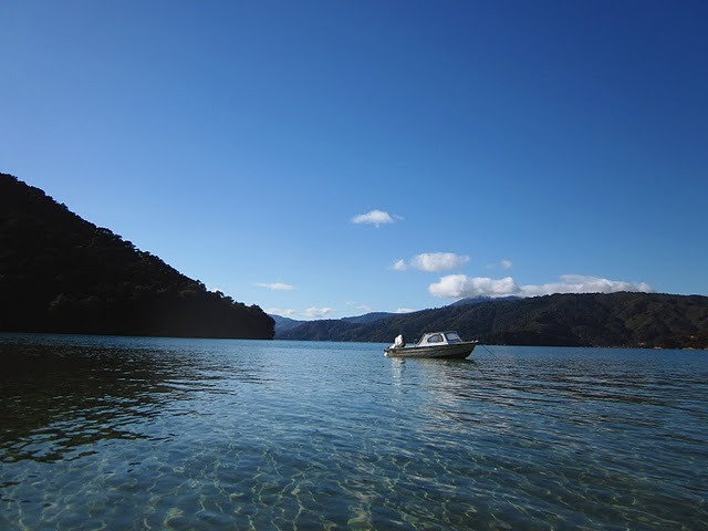 Week 33: A small motorboat anchored in a cove off the Queen Charlotte Sound.