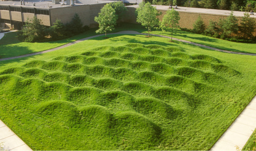 themathkid:  Wave Field at University of Michigan. Had a chance to explore this a few years ago. Very fun to run on!