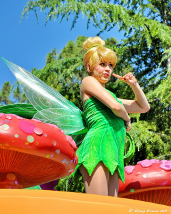 belleieve:  Soundsational Tink (by Disney-Grandpa)