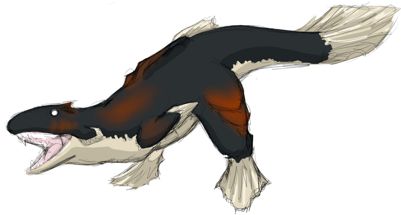 Lavasioth Derp Fish sketch.