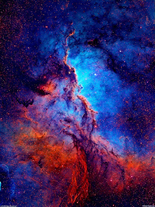 NGC 6188      Dark shapes with bright edges winging their way through dusty NGC 6188 are tens of light-years long. The emission nebula is found near the edge of an otherwise dark large molecular cloud in the southern constellation Ara, about 4,000 light-years away.      Copyright: Piotrek Sadowski   Side note: I did the filter editing for this pic (something I don't really do but felt compelled to with this pic), this is the original filter from the astrophotographer. You've probably seen the pic above with the same color editing used throughout tumblr for others means (namely for cute sciency quotes but I assure you this version originated here). I wanted the emission to be so saturated that when people looked at it they noticed how the ionized hydrogen dominated the area and how much light years the area took up so you'd get an idea of just how massive these stars are despite them not reaching their main sequence (when they typically are most stable) phase yet. Normally these are considered stellar nurseries largely due to the fact that there are young and very hot stars kicking up the activity surrounding it. Usually only very hot stars, like the young ones, have enough radiation in the ultraviolet region to ionize the hydrogen and give off a view this gorgeous when seen through specific astrophotographic filters (depending on what kind of composition you're trying to highlight or look at).