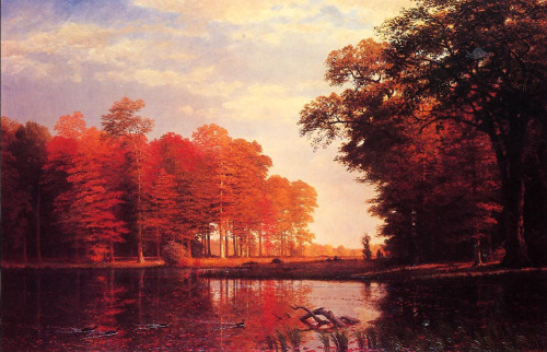 autumnappreciation:  'Autumn Woods' by Albert Bierstadt
