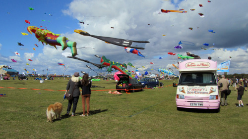 A photo from the Kite Festival on the Southsea Common, during the lovely sunshine. Video will be uploaded later..!