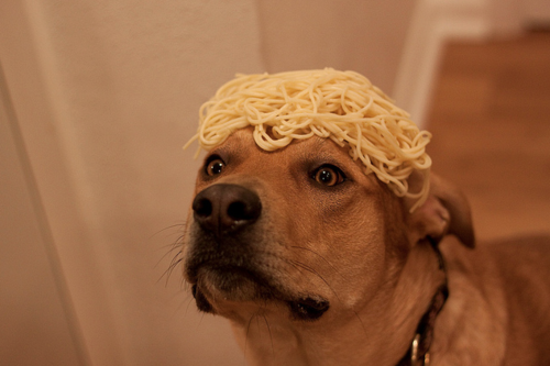 Noodles on his head =) hihihih =)