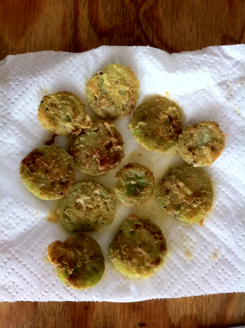 Fried green tomatoes harvested before the hurricane.   Try a batter of sea salt, black pepper, and smoked paprika mixed with flour. Dip the sliced tomatoes in egg and milk wash, batter, and fry.
