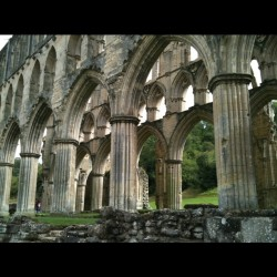 Rievaulx Abbey taken and tweeted by Liberty London Girl during a trip to Northern England . I am overwhelmed by the beauty and it just reinforces how much I love the UK. Adding this to the list of places that are must see when I someday, hopefully, get back and the Yorkshire area in general has always been top of the list. ( Her blog has a great post on  Durham Cathedral, site of a friend's wedding and more on the trip, so if you want to be inspired , check it out.)