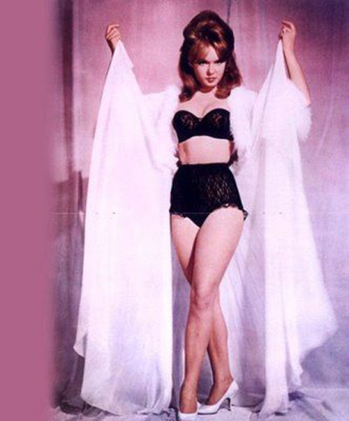 hollyhocksandtulips:  Joey Heatherton