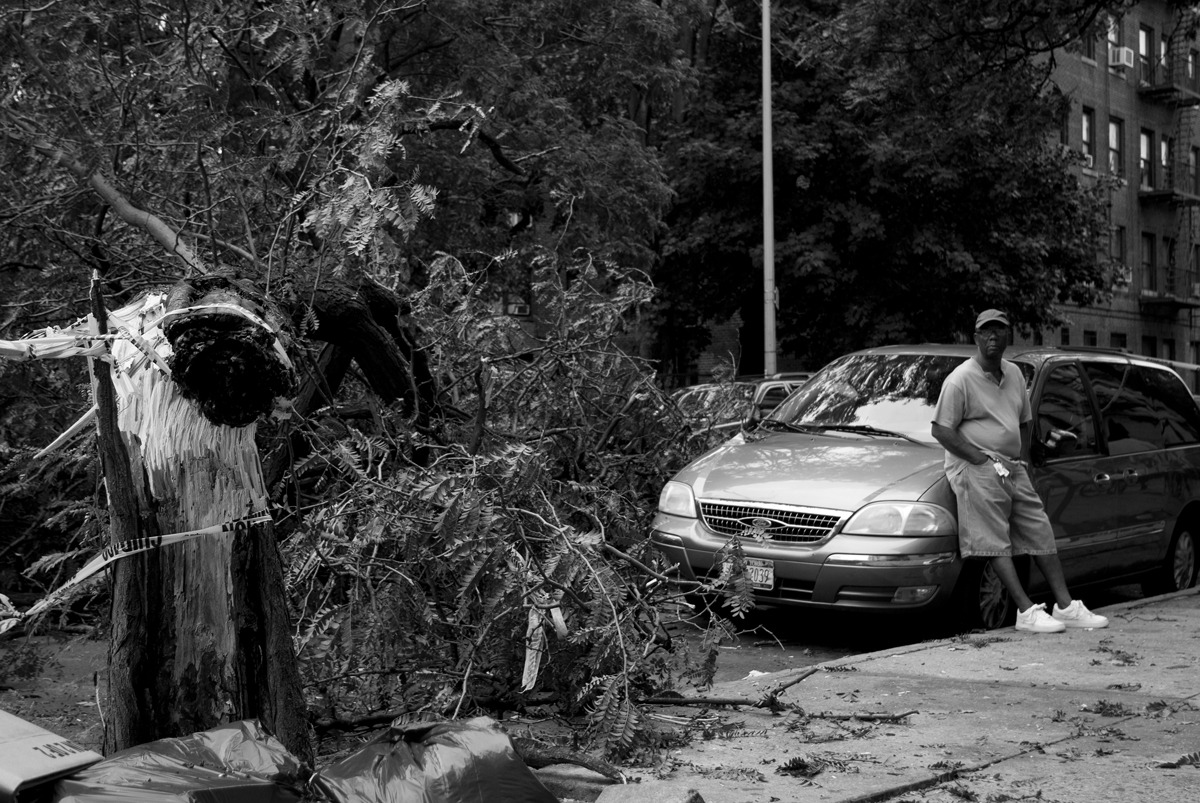 Hurricane Irene - Prospect Park Damage. This guy lucked out when it came to parking… danieljulier@gmail.com