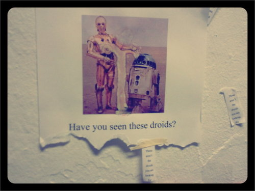 Someone on my floor totally rules. (The tag says 'These aren't the droids you're looking for'. XD)