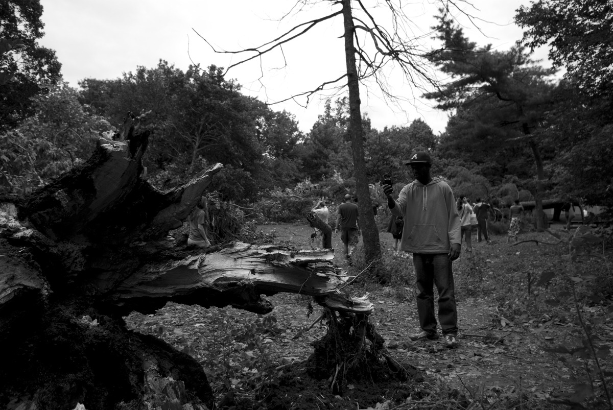 Hurricane Irene - Prospect Park Damage. Everyone was out doing the exact same thing as me, taking photos of the chaos.  danieljulier@gmail.com