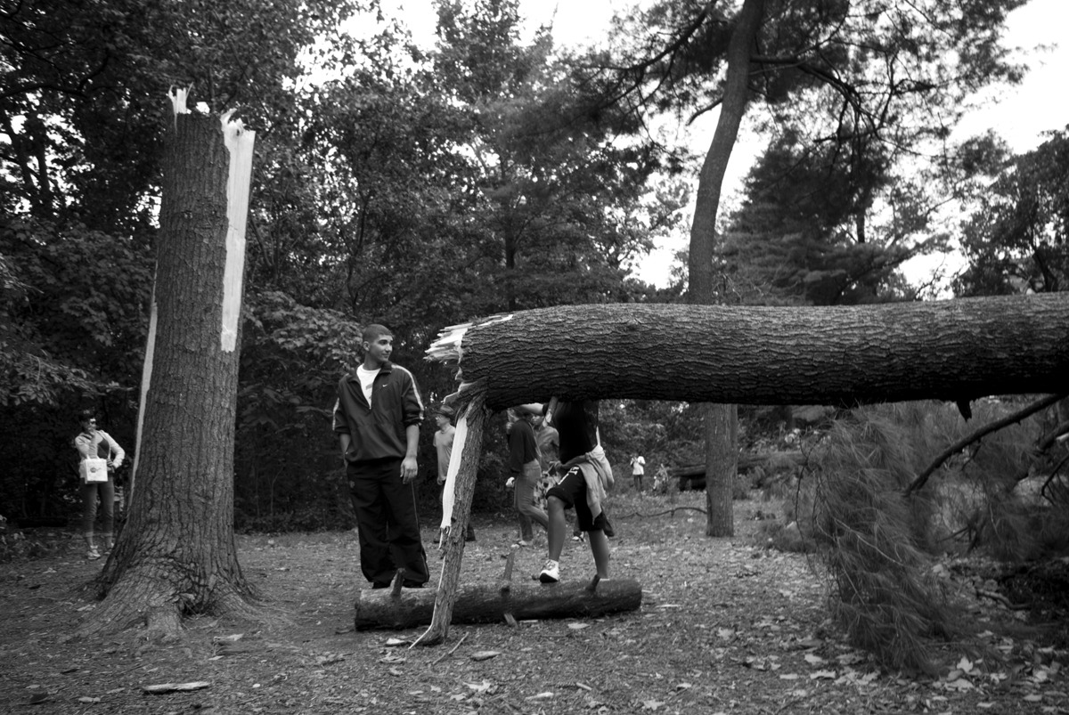 Hurricane Irene - Prospect Park Damage. Posing for pictures.  danieljulier@gmail.com