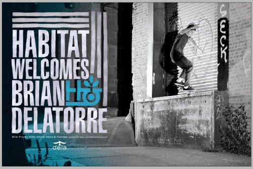 Habitat welcomes Brian Delatorre