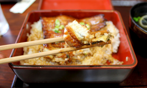 unagi meat by shades04