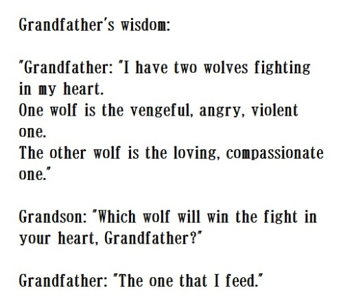 "Grandfather's wisdom: ""Two wolves"""