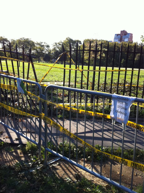 McCarren Park this morning. Not sure why the busted fence is funny to me, but… Hah.