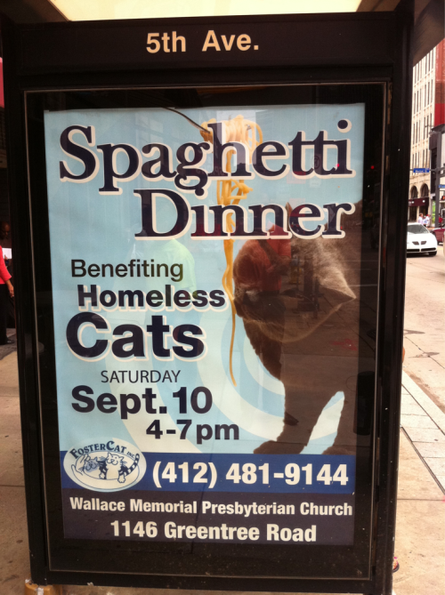 Why does this even exist?  Those homeless cats will get so fat after the carb load.