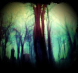 Once Upon A Forrest Eve by *intao