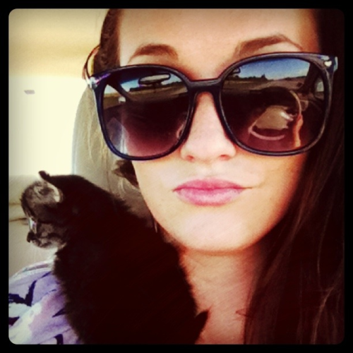 Driving my kitty to her new home. She stole my heart.   I might cry.