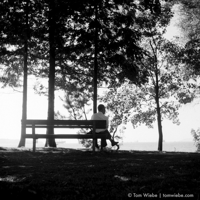 A Quiet Bench on Flickr.Via Flickr: The best part about Ceperly Meadow is the variety of experience it packs into a relatively small area. Right between the beach and the cacophany of dozens of picnics, family reunions, frisbee and bocce games lays a quiet row of benches where one can sit undisturbed and watch the ships come and go on English Bay.