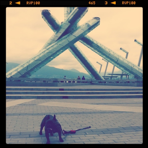 Tubby & his auntie went to visit the Olympic cauldron in Vancouver!