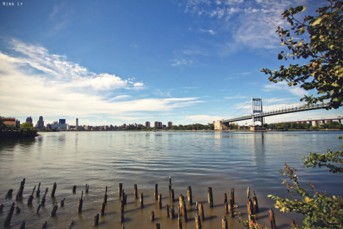 ninaly:  Astoria still holding up beautifully after Irene knocked down some of its trees Facebook | Portfolio  http://ninaly.tumblr.com/