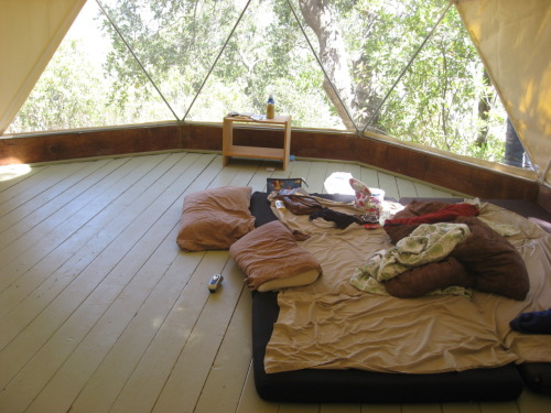 sweethomestyle:  yurt life. submitted by chime-lala.tumblr.com