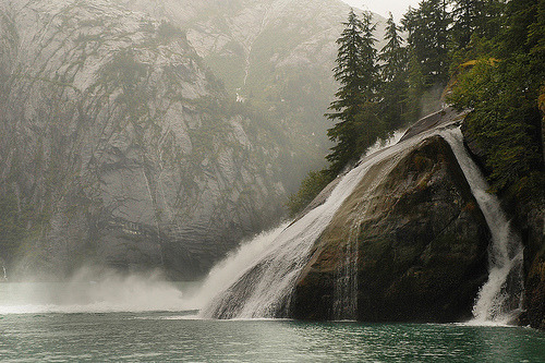 woodendreams:  (by christinamcraft)