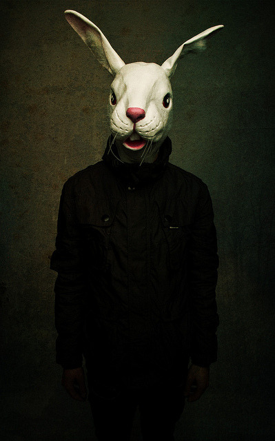 Animal mask/Anti Fashion by Kayleigh McCallum on Flickr.