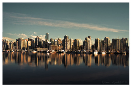 Vancouver cityscape taken from Stanley Park by the seawall!