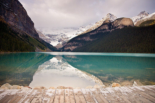 woodendreams:  (by Clickr Bee)