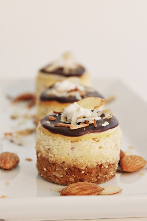 gastrogirl:  mini almond joy cheesecakes.