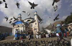 agrisarah:  Kabul, Afghanistan: Muslims gather to pray Eid al-Fitr Prayer (2011)  Eid Mubarak, everyone!