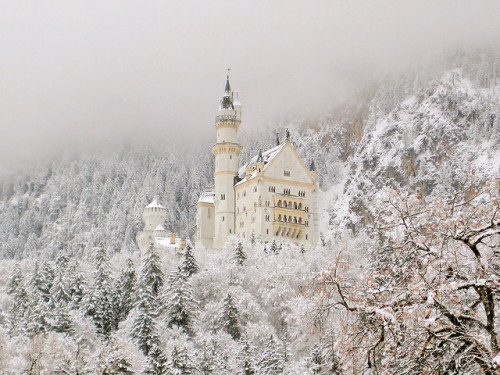 letsliveindreams:  Neuschwanstein Castle by Luiz Pires on Flickr.