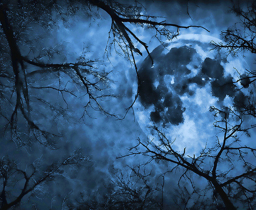 llbwwb:  The Hanging Man's Moon (by jackaloha2)