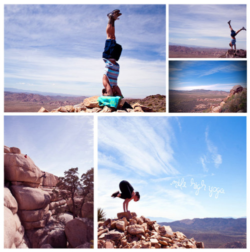 bluestripedwalls:  yoga during a hike