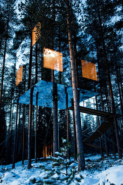 rustybreak:  Treehotel in Sweden.I blogged this before but blogging again, one of my favourite buildings.  Wow. I love this!
