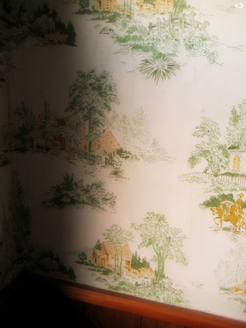 Vintage wallpaper, Merion Village home.  Cols. OH.