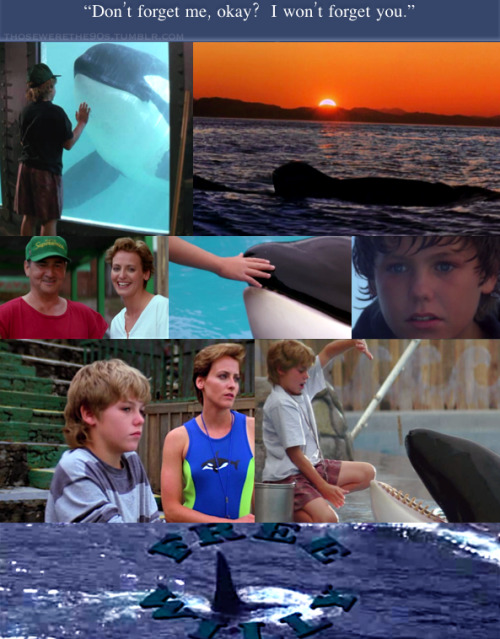 Favorite Movies of the '90s Free Willy | 1993